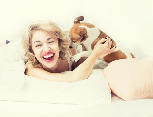 5 Reasons Why You Should Let Your Dog Sleep On Your Bed